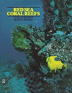 Best red sea marine saudi arabia Reviews