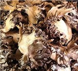 OliveNation Maitake Mushrooms 8 oz
