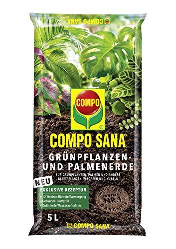 COMPO SANA Grünpflanzen- und Palmenerde mit 12 Wochen Dünger für alle Zimmer- und Balkonpflanzen sowie Palmen und Farne, Kultursubstrat, 5 Liter