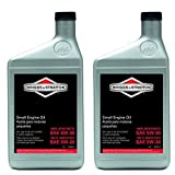Best Synthetic Engine Oils - Briggs and Stratton 100074 Pack of (2) 1-Quart Review