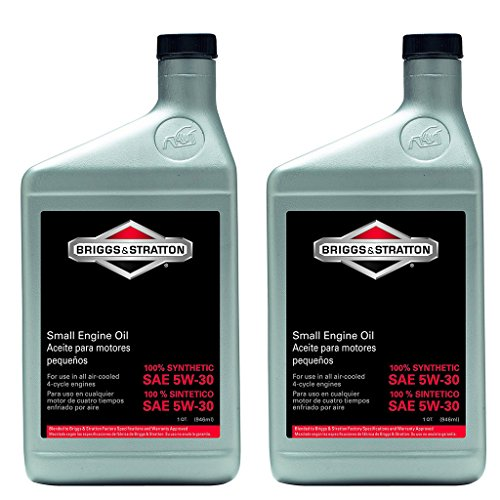Briggs and Stratton 100074 Synthetic Oil