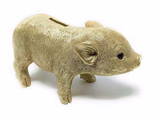 Schattig spaarvarken in goud spaarpot spaarpot - Grootte: 24 x 14 cm (LxH)