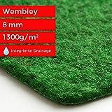 Steffensmeier Kunstrasen Teppich Wembley | für Balkon und Terrasse | grüner Nadelfilz, Größe: 400x250 cm