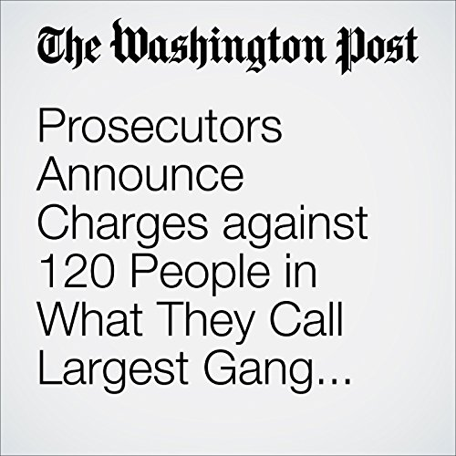 Prosecutors Announce Charges against 120 People in What They Call Largest Gang Takedown in New York City History audiobook cover art