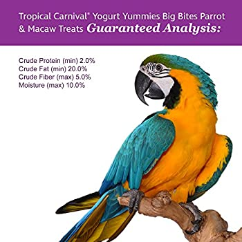 F.m. Marron de carnaval Tropical Yoghourt Yummies Big Bites Parrot & Macaw friandises