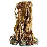 Fransande Árbol de acuario de madera Driftwood en natural, hecho a mano, decoración de pecera, árbol de tocón de bosque