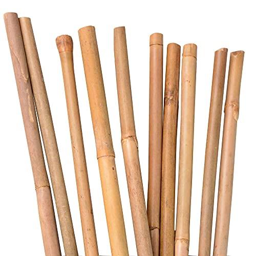 Canne di bambù, rampicanti, aste per piante in bambù, 120 cm, colore naturale, diverse lunghezze