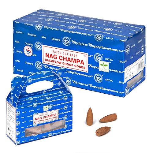 6pc Display - Satya Backflow Cones - 24pc Box/Nag Champa