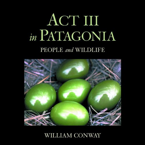 Act III in Patagonia cover art
