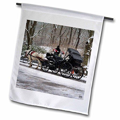 3dRose FL_10301_1 Snow Blizzard in Central Park Manhattan New York City Garden Flag, 12 by 18-Inch
