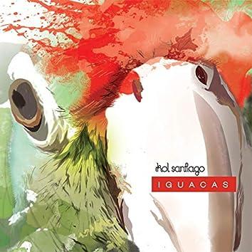 Iguacas