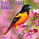 Backyard Birds 2021 Wall Calendar