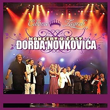Koncert U Čast Đorđa Novkovića