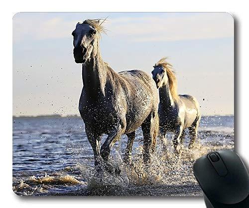 Alfombrilla de ráton de la Carrera de Caballos, Animales de la fotografía Animal Cielo Claro, Estera del ratón del Caballo