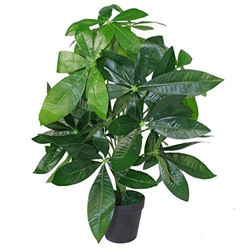 Leaf Design UK realistico vaso di plastica nera, albero 50 cm, pianta di denaro