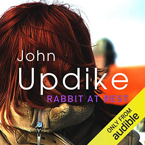 Rabbit at Rest cover art