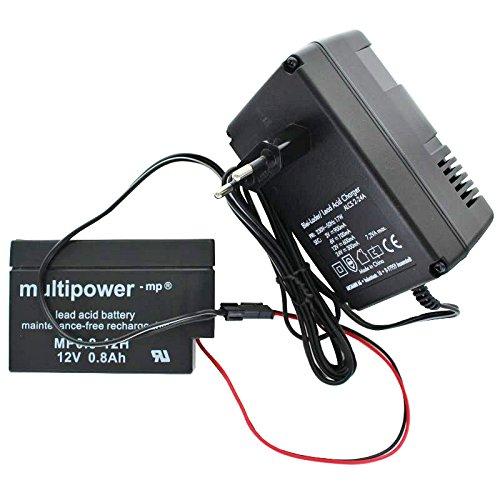AccuCell Neu Ladegerät inkl. 1 Bleigel Akku mit Kabel und Molex Stecker schwarz passend für Multipower Blei Akku MP0.8-12H Heim und Haus ALCS 2-24A Automatik Batterieladegerät mit Erhaltungsladung