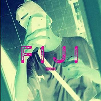 F I J I