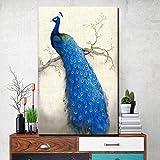 Danjiao Größe Blau Pfau Poster Und Drucke Große Pfau