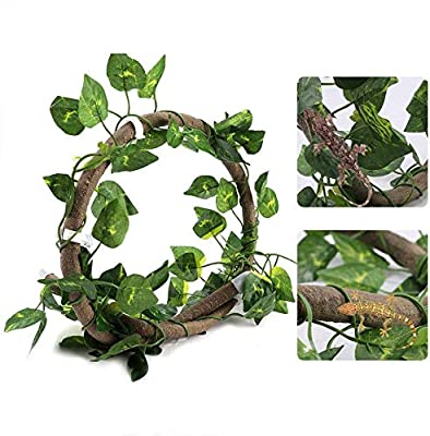 HEEPDD Reptile Vines, 3.28ft Artificial Reptile Climbing Branch with Suction Cups Flexible Jungle Rattan with 6.89ft Long Vine Habitat Decor for Gecko Chameleon(3.28ft Rattan+Scindapsus Leaves) from HEEPDD
