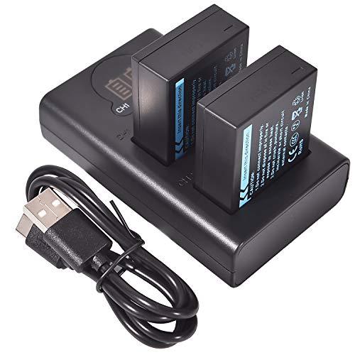 DSTE 2x NP-W126 Ricambio Batteria + Caricatore doppio USB con display LCD Compatibile per NP-W126S e FUJI HS30 EXR,HS30EXR,HS33 EXR,HS33EXR,HS50 EXR,HS50EXR,X-A1,XA1,X-E1,XE1,X-M1,XM1,X-Pro1,XPro1