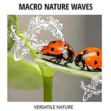 Macro Nature Waves - Versatile Nature