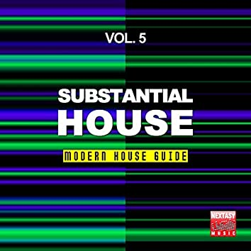Substantial House, Vol. 5 (Modern House Guide)
