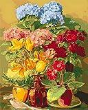 Regalo de Pintura al óleo para Adultos niños óleo para adultos niños pintura por Tulipán Animal- (40x50cm) -Marco de madera