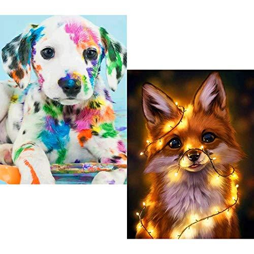 umorismo Juego de 2 pinturas de diamante 5D para manualidades, pintura con diamantes de imitación para decoración de pared del hogar