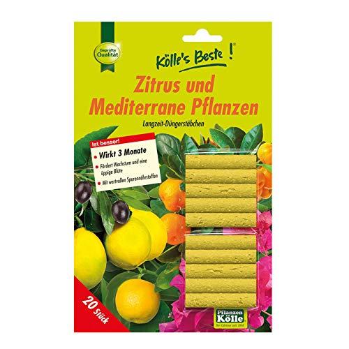 Kölle's Beste! Düngestäbchen für Zitruspflanzen 20 Stück