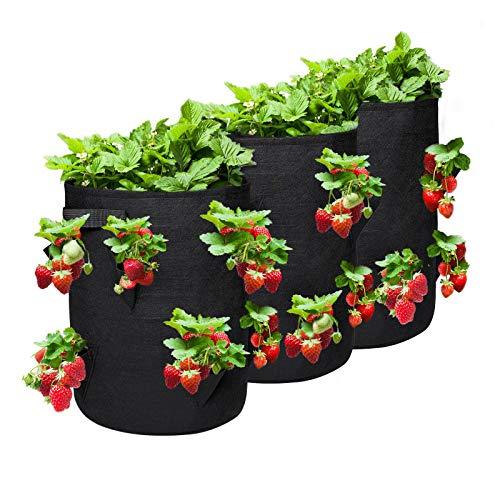 NASUM Erdbeere Pflanzsack, Pflanzen Taschen mit 2 Griffen und 8 seitliche Wachstumstaschen, Pflanztasche, Grow Tasche, Pflanzsack für Erdbeeren, Tomaten, Knoblauch, Zwiebeln - 3 Pack(10Gallonen)
