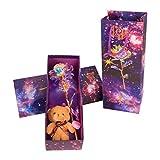 Qhome LED arco iris, oro rosa, galaxia, oro rosa, flores con bonitos ositos y lila, caja de regalo para San Valentín, Día de la Madre, cumpleaños, aniversario