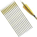 Flechas De Práctica De Tiro con Arco De Fibra De Vidrio De 30'con Puntas Atornilladas para Arco Recurvo O Compuesto (Paquete De 12)