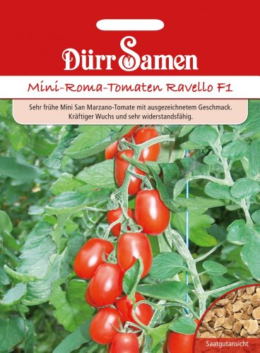 Dürr Samen 1965 Mini-Romatomate Ravello F1 (Romatomatensamen)