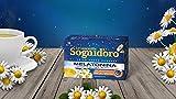 Sogni d'Oro Camomilla - Solubile Senza Zuccheri con Melatonina 64g [ Bustine 16x4g ]