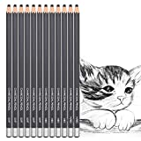 Best Charcoal Pencils - 12pcs Charcoal Drawing Pencils Set Sketch Pencils Soft Review