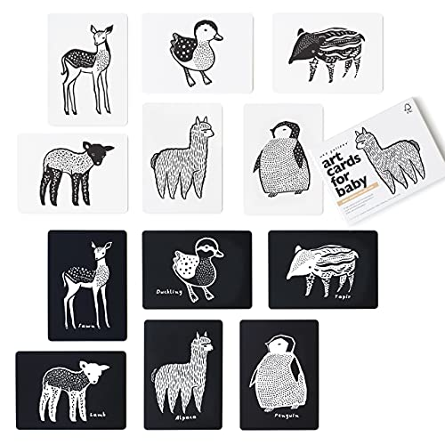 Wee Gallery Black and White Art Flash Cards for Babies, High Contrast...