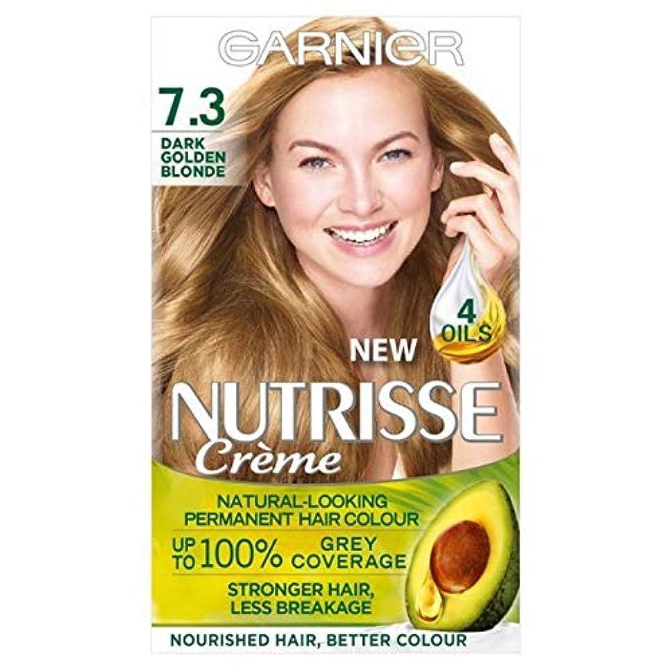 熱ストレス議会[Garnier ] ガルニエNutrisse永久染毛剤黄金銅7.3 - Garnier Nutrisse Permanent Hair Dye Golden Copper 7.3 [並行輸入品]