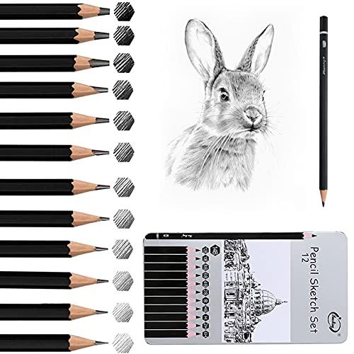 GUBOOM Bleistifte, schwarze Skizzerstifte Set 2H-8B, 12 Stück mit verschiedenen Minenhärten, Professionelle Bleistifte Zeichenbleistifte Set für Anfänger Kinder Erwachsene Künstler