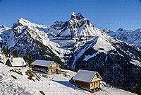 大人のためのジグソーパズルObwaldenHouse SnowSwitzerlandパズル1000ピース木製旅行お土産ギフト