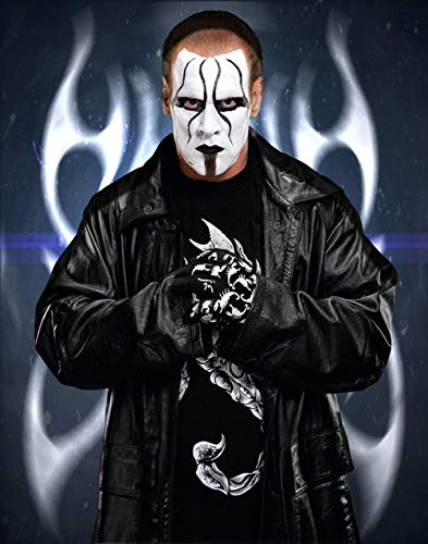 WWE Sting Poster Art Print Posters 11×14 inches Unframed Canvas Print