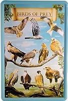 ティンサインレトロ広告20 x 30 cm猛禽類の鳥金属草原941