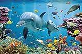 1art1 Delfine - Verzaubertes Tropen-Meer Poster 91 x 61 cm
