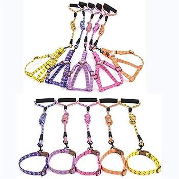 Pet Produits for Animaux Domestiques for Colliers De Chien Harnais Laisse Petit for Chien Fournitures De Harnais De Collier De Chien Laisse for Animal Classic