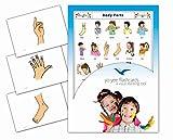 Yo-Yee Flashcards Tarjetas con Ilustraciones para el fomento del Aprendizaje del Idioma - Partes del Cuerpo - para Las Clases de inglés en guarderías, escuelas Infantiles y educación Primaria