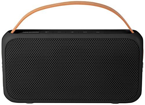 MEDION E65555 Bluetooth 4.0 Lautsprecher (2 x 10 Watt, AUX Anschluss, IPX4 Spritzwassergeschützt, USB Anschluss, integrierte Powerbank, 1300 mAh, Li-Ion Akku) schwarz