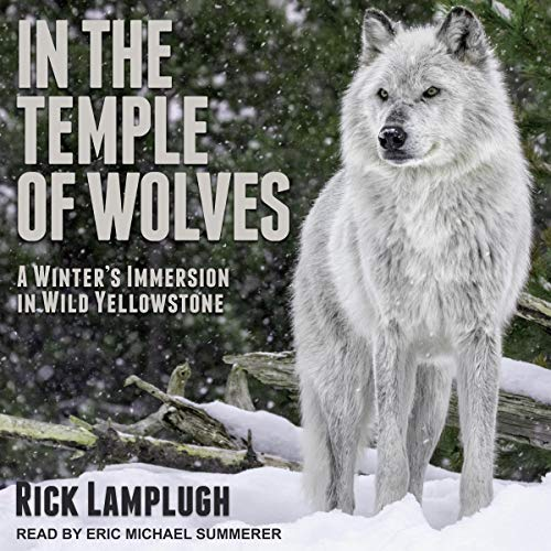 In the Temple of Wolves audiobook cover art
