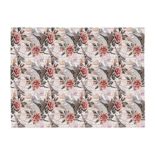 Manta suave con estampado de rosas de la Torre Eiffel para sofá cama y cama ligera para todas las estaciones de 156 x 202 cm