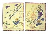 Desconocido Set 2 Cuadros Placa Metal Chapa Antigua OXIDO Flores Mariposa Botanica Variado