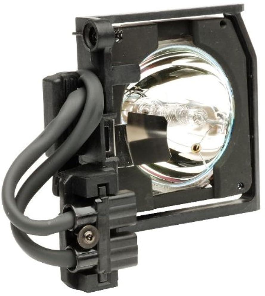 夏とげのある星Projector Lamp
